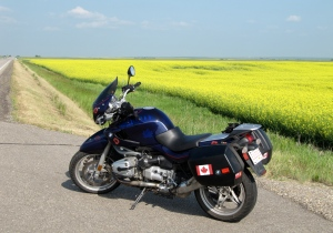 Ride to Hays, Alberta